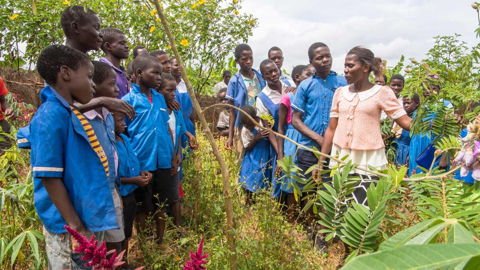 Permakultur Schulgarten Malawi