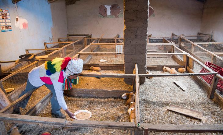 Peru-Projekt-Besuch-2019-8